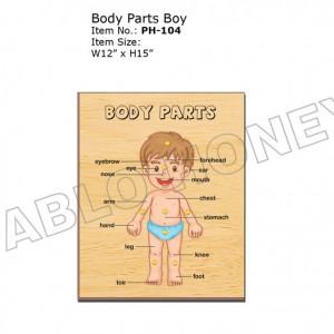 Body Parts Boy
